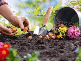 Hersteller von Blumenerde